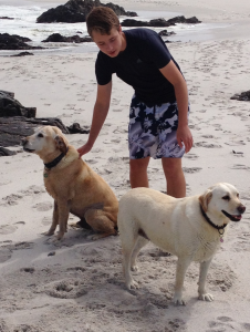 Our furry friends in South Africa